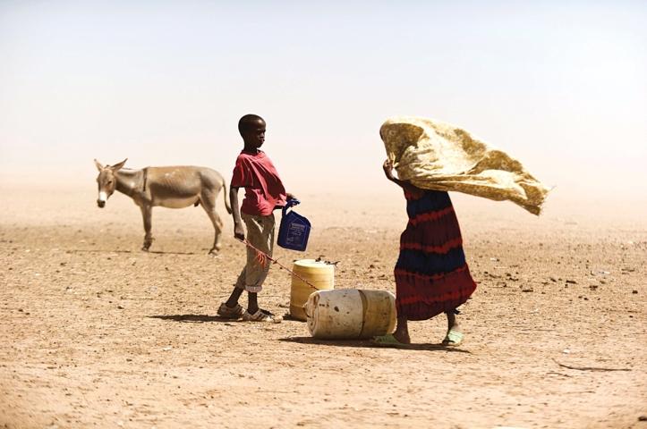 Tørke i Kenya, Afrikas horn.